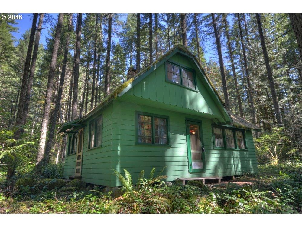 Mt hood oregon mt hood leased land cabins for sale liz for Camps and cottages