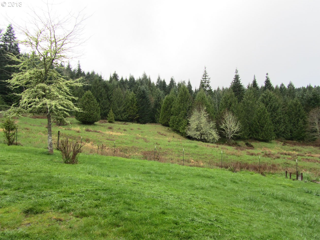 87040 Cedar Flat Rd Eugene Home Listings - Galand Haas Real Estate